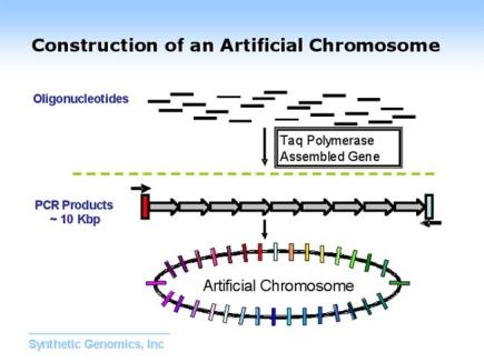 synthetic genomics.jpg